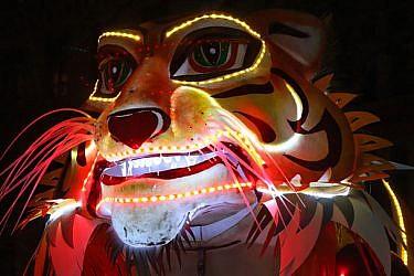 אחד ממייצגי התאורה בפסטיבל האורות של ליון. צילום: Shutterstock