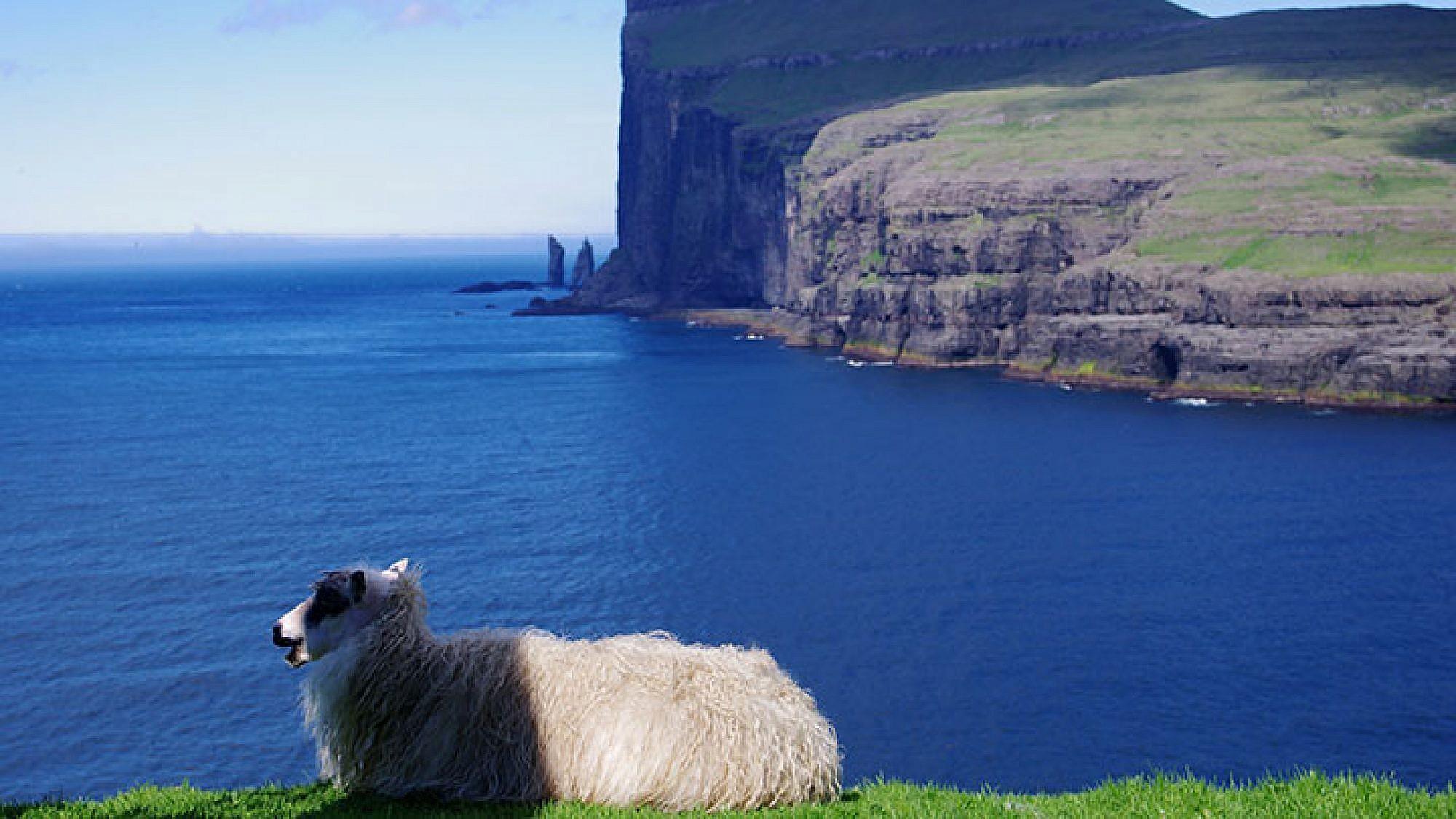 אין ספור וריאציות על איים ירוקים, על צוקים ועל מי אוקיינוס. איי פארו   צילום: שאול אדר