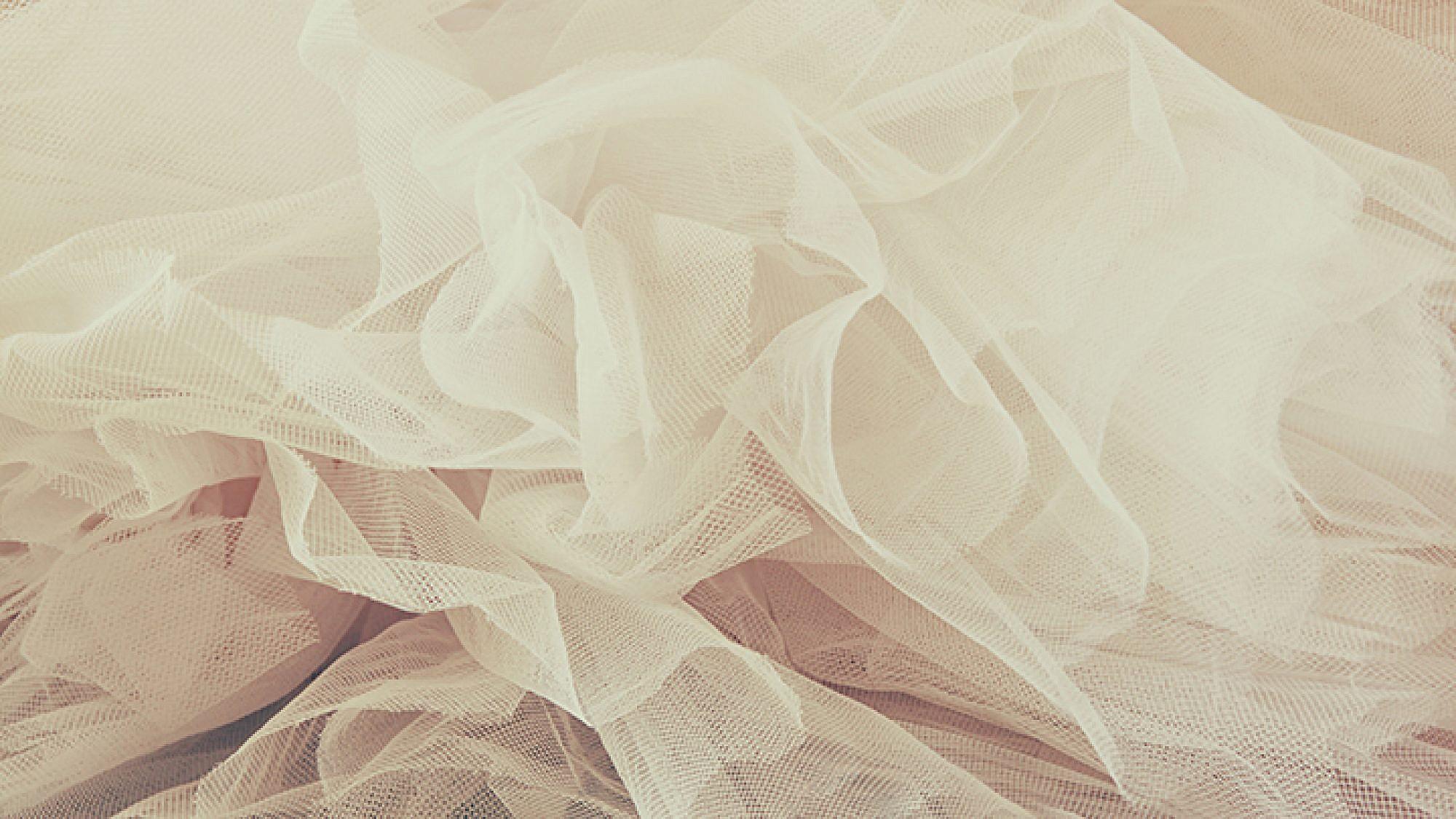פרוייקט החתונות הגדול: הטיפים הסודיים לחתונה מושלמת | צילום: shutterstock
