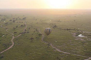 טנזניה   צילום: רויטל חורש