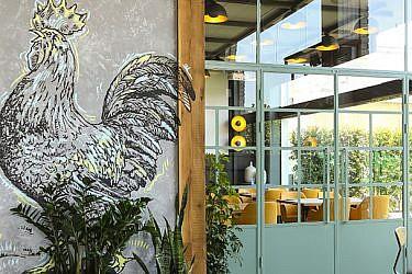 עבודת אמנות מציגה תרנגול כסמל אוניברסלי לבוקר בפלטת הגוונים של הרשת | צילום: שרית גופן