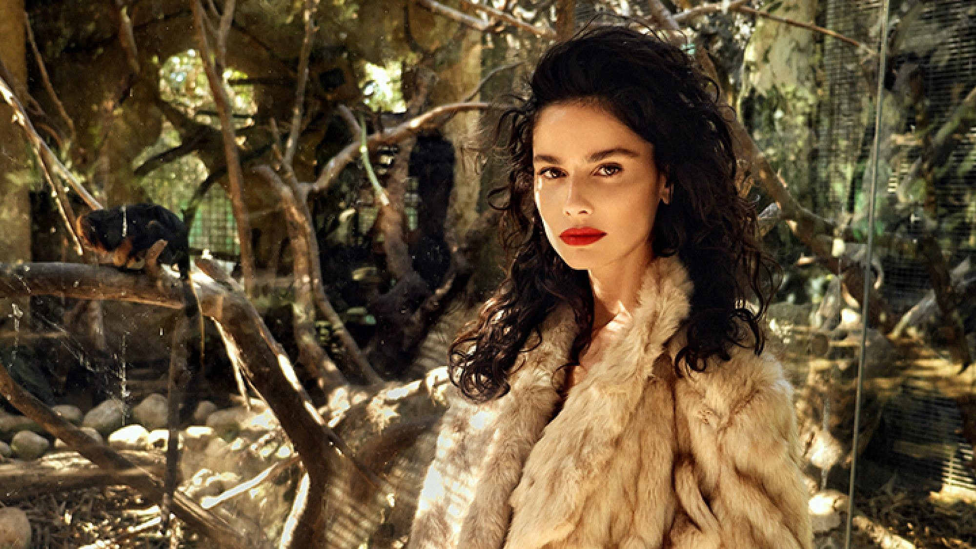מעיל: זארה   צילום: אייל נבו