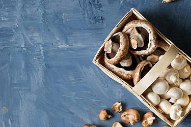 מלמעלה למטה: פטריות פורטבלו ושיטאקי | צילום: בועז לביא