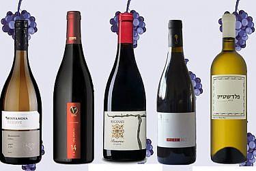יינות ים תיכוניים שיפתחו לכן את הבריזה