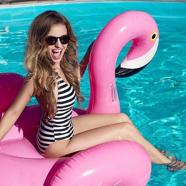תנו לפלמינגו לחיות! | צילום: Shutterstock