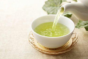 תה ירוק   צילום Shutterstock