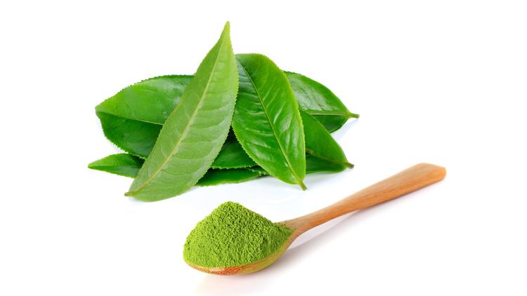 עלי תה ירוק | צילום: shutterstock