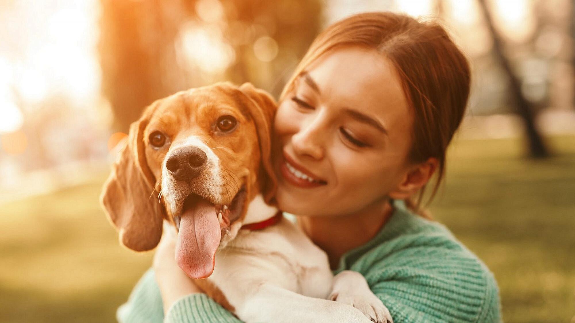 מסלולים ידידותיים לכלבים   צילום: Shutterstock