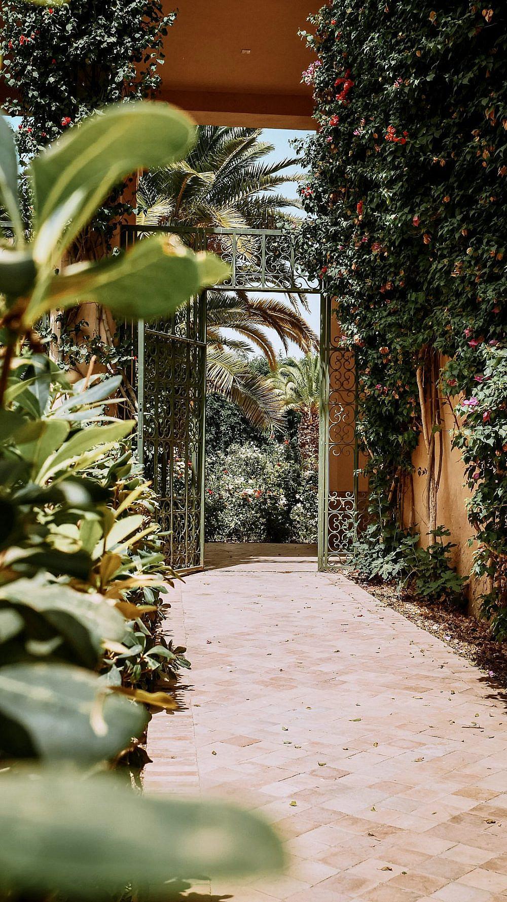 רצף אינסופי של ירוק   צילום באדיבות Club Med Marrakech la Palmeraie